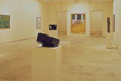 Museo de arte contemporáneo esteban vicente, Segovia