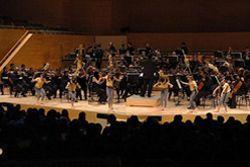 'Guía de orquesta', l'auditori, Barcelona