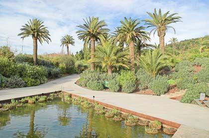 'Consultorio de plantas', jardí botànic de Barcelona