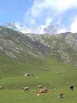 Teleférico de fuente dé, camaleno (Cantabria)