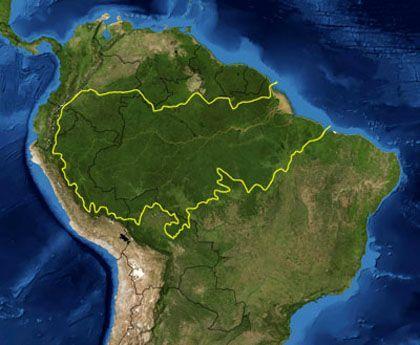 'Planeta amazonia', museo de la ciencia de valladolid.