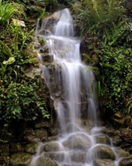 Jardín botánico atlántico, gijón (asturias)