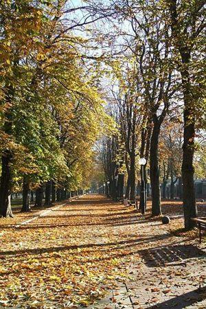 'Senderismo otoño-invierno 08/09', fundación mejora, vitoria