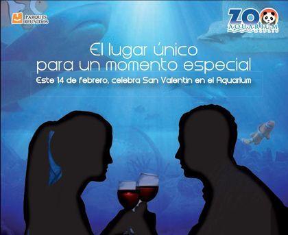 'Cena romántica'. zoo aquarium de Madrid