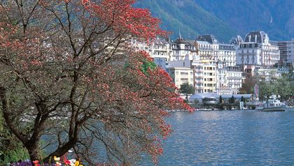 El lago léman, espejo de los alpes