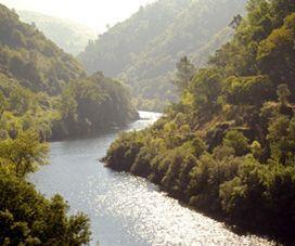 Ourense, el milagro del agua