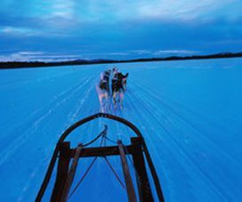 Laponia, naturaleza en estado puro