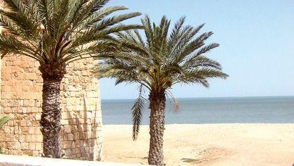 Isla de djerba, un oasis en el mediterráneo