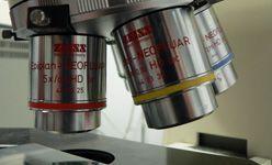 Taller: 'La vida al microscopio', Cosmocaixa Madrid