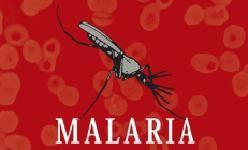 'Malaria', biblioteca nacional, Madrid