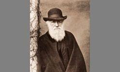 'La evolución de darwin', museo nacional de ciencias naturales, Madrid