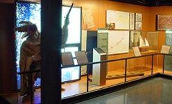 Museu d´història de catalunya, Barcelona