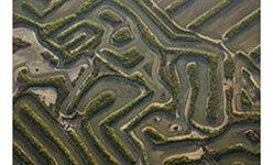'Armonia fractal de doñana y las marismas', parque de las ciencias, Granada