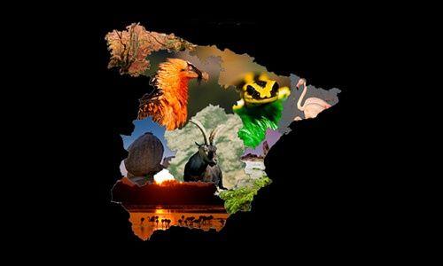 'Espacios naturales, guardianes de la biodiversidad', centro nacional de educación ambiental, valsaín (Segovia)
