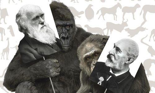 'Darwin y de la espada. dos vidas paralelas. los caminos de la evolución', casa de las ciencias, Logroño