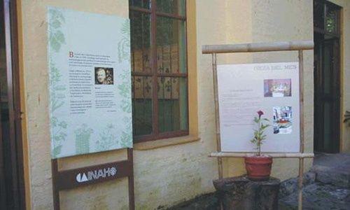 Jardín etnobotánico y museo de medicina tradicional y herbolaria, cuernavaca