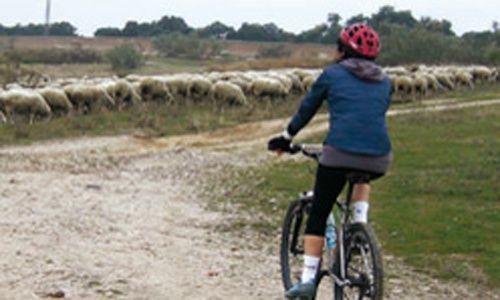'Itinerarios en bicicleta por caminos históricos de la comunidad de Madrid', la casa encendida, Madrid
