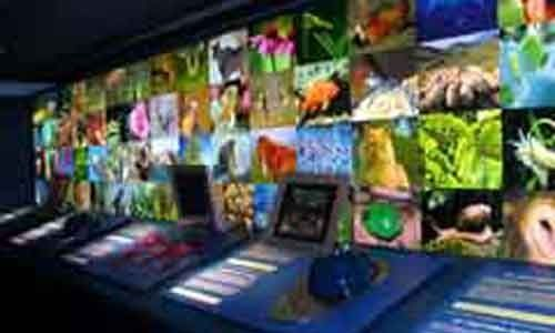 Naturnova centro interactivo de educación ambiental, Vigo