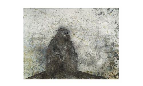 Café-tertulia de la exposición: 'Miquel barceló 1983-2009. la solitude organisative', Caixaforum Barcelona