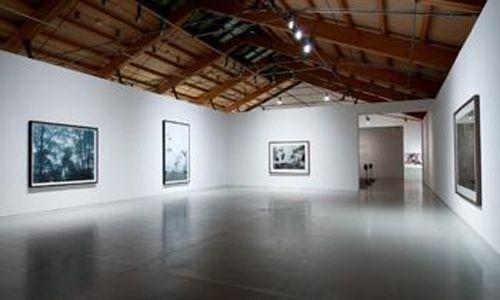 'Imágenes y sonidos en extinción', centre d'art la panera, Lleida