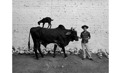 'Flor garduño. trilogía'. antiguo colegio de san ildefonso, Ciudad de México