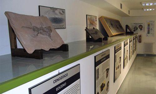 'Tesoros en las rocas'. Museo elder de la ciencia y la tecnología, las palmas de gran canaria