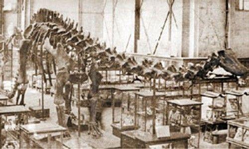 'Érase otra vez un museo'. Museo universitario del chopo, Ciudad de México