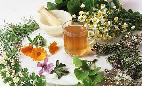Homeopatía, ¿medicina alternativa? museo de la ciencia de valladolid