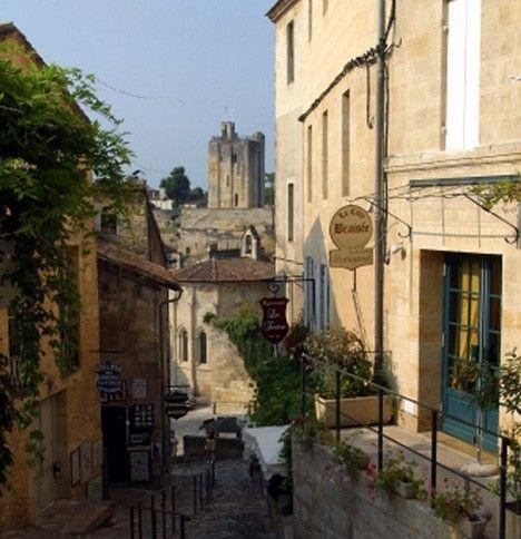 Los viñedos de burdeos: saint-emilion, el medoc