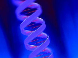 La genética del cáncer
