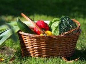 Adelgazar siguiendo Dietas vegetarianas