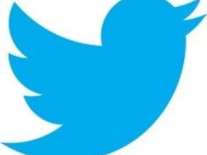 Tus primeros pasos en Twitter