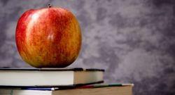 TEST: ¿Aprobarías un examen de primaria?