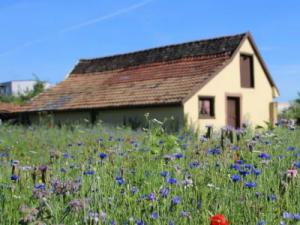 ¿Cómo puedo convertir mi vivienda en un complemento a la pensión?