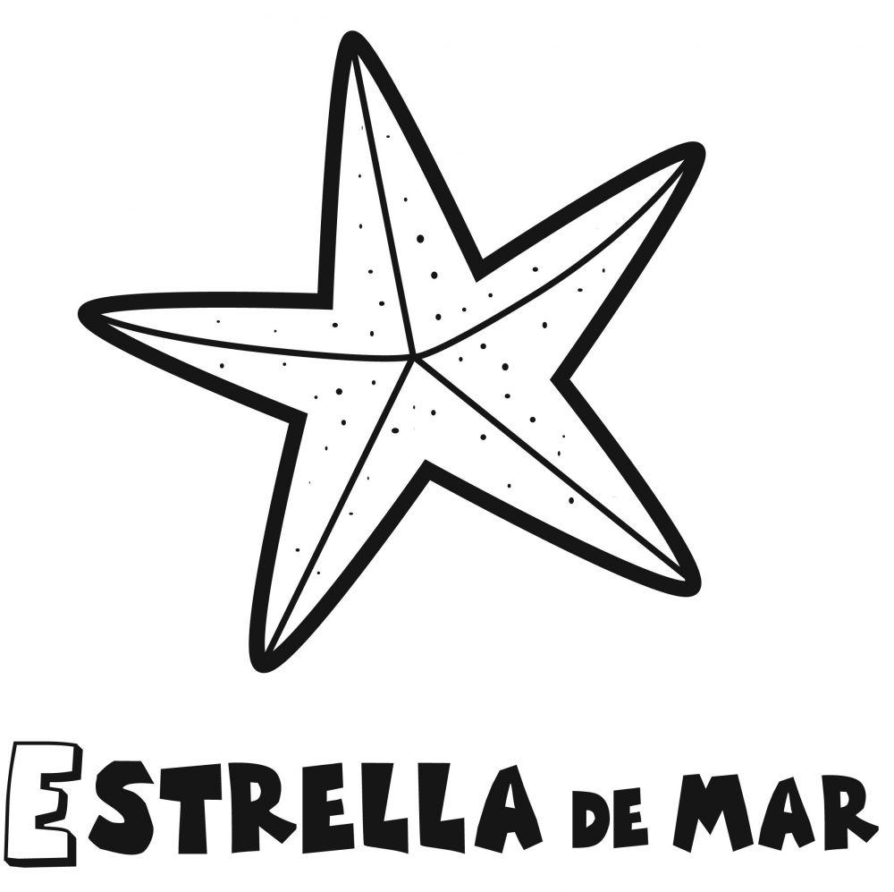 Colorear la estrella de mar