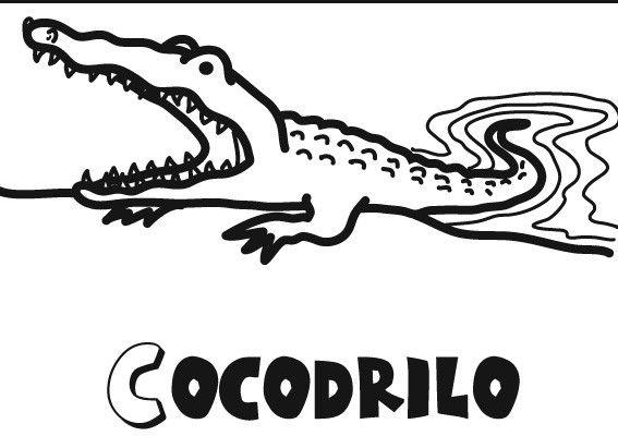 Colorear a un cocodrilo