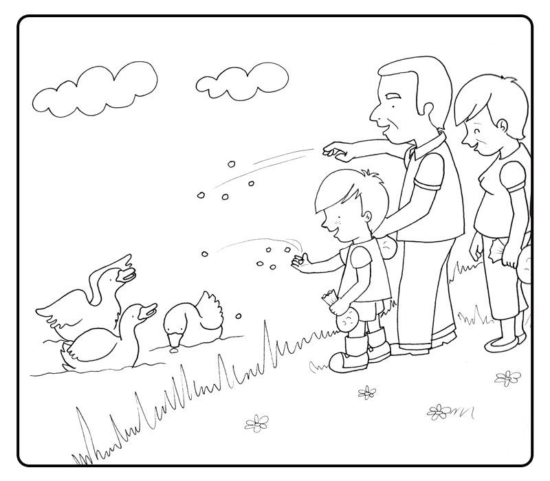 Abuelos dando de comer con sus nietos a los patos