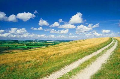 Camino campo