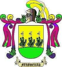 Escudo del apellido Falguera o falgueras