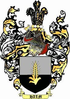 Escudo del apellido Halm