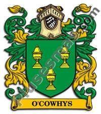 Escudo del apellido Ocowhys