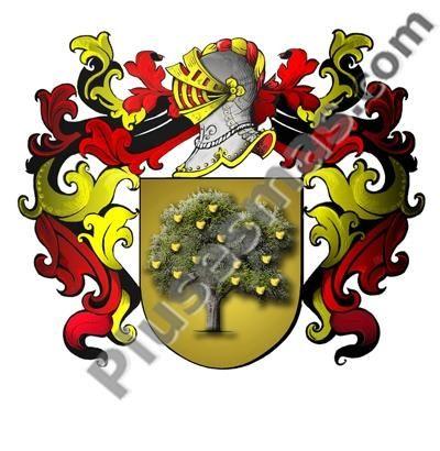 Escudo del apellido Raduan