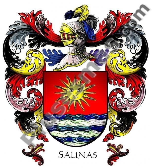 Escudo del apellido Salinas