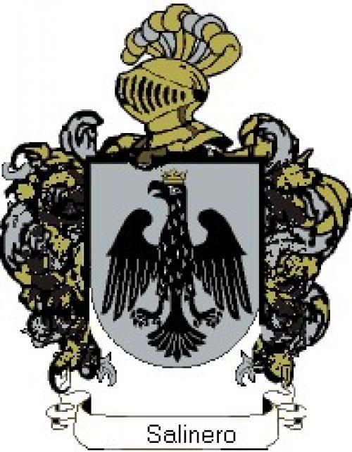 Escudo del apellido Salinero