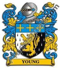 Escudo del apellido Young