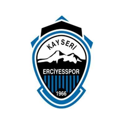 Escudo del apellido Kayseri Erciyesspor