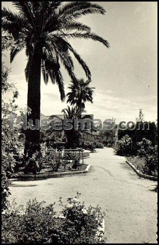 Una perspectiva de los jardines de la alameda de mor n de la frontera sevilla fotos antiguas - Fotos de moron de la frontera ...