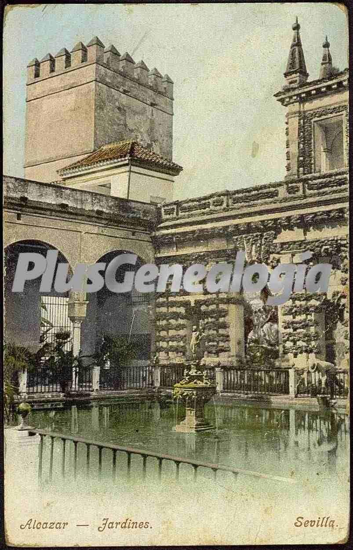 Jardines del alc zar de sevilla fotos antiguas for Jardines del eden sevilla