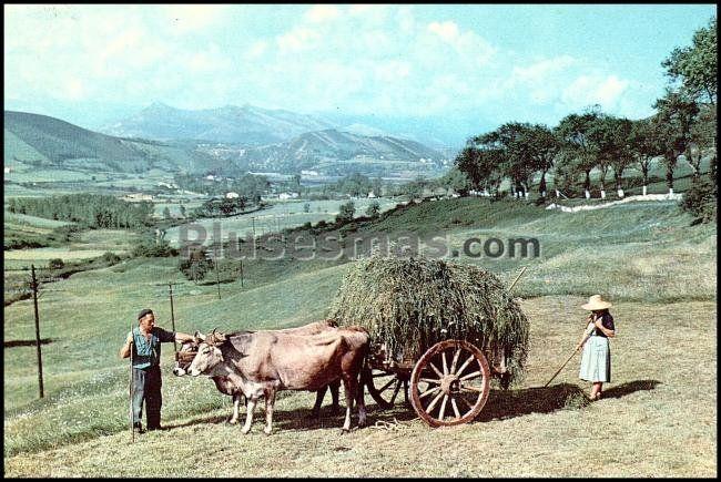 Paisaje montañés de santander (cantabria)
