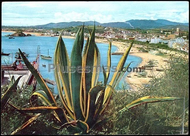 Un detalle de la costa de tarragona (tarragona)